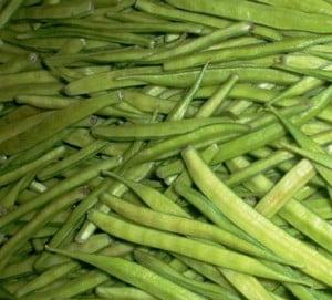 Guar crop